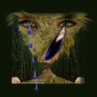 Doro Breger: Die Tränen (2009)